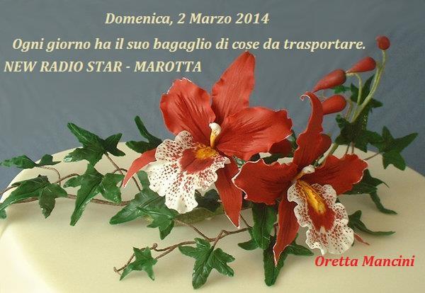 ORCHIDEA 02 .03.14